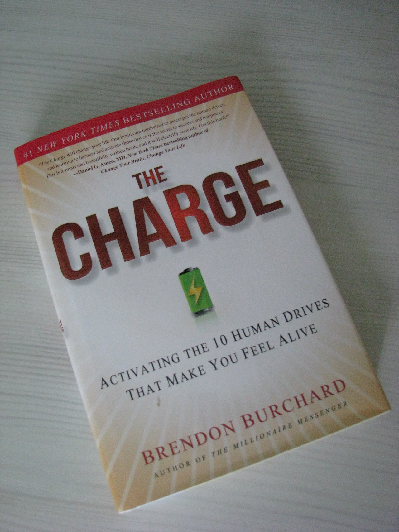 Обзор книги «The Charge. Activating the 10 Human Drives That Make You Feel Alive»